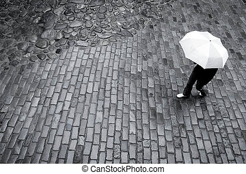 paraply kvinna, in, regna
