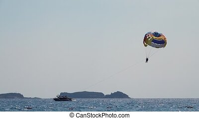 Parasailing behind a boat couple flies over the sea on a...