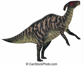 Parasaurolophus Striped on White - Parasaurolophus was a...