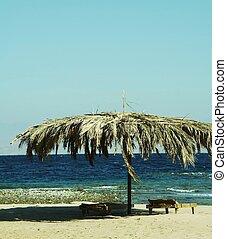 parasole, spiaggia