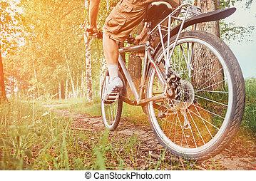 parc, été, homme, équitation bicyclette