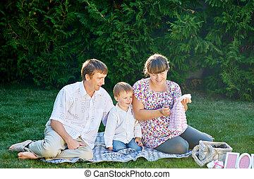 parc, été, pique-nique, jeune famille
