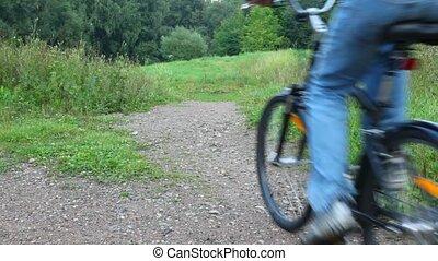parc, appareil photo, vélo, homme, équitation