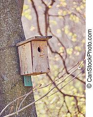 parc, arbre, birdhouse, pendre