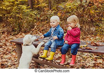 parc, bébés, doggy, automne