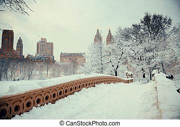 parc central, hiver