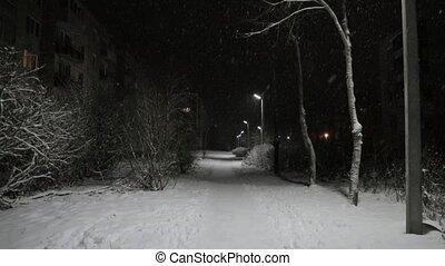parc, chute neige, nuit