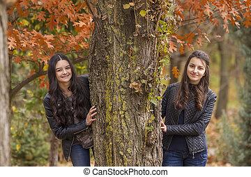 parc, filles, deux, automne, amusement, avoir
