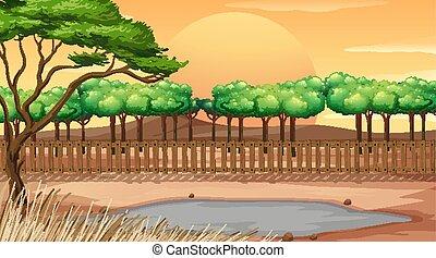 parc, fond, scène, coucher soleil