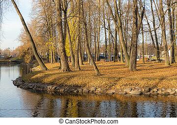 parc, jour ensoleillé, automne