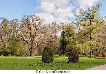 parc, jour ensoleillé, printemps