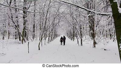 parc, marche, couple, hiver, heureux
