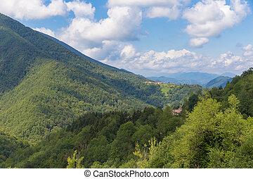 parc, naturel, regional, des, pyrenees, ariegeoises, em,...