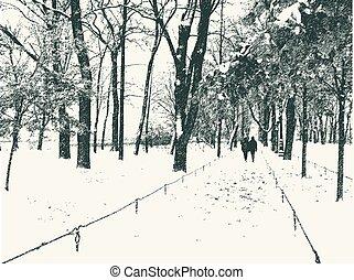 parc, neige, ville