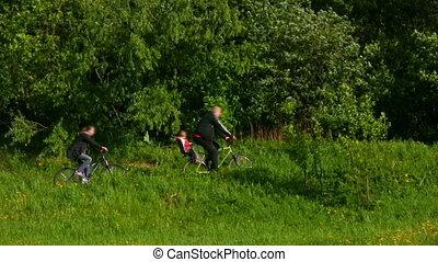 parc, père, fils, bicycles, mère, équitation