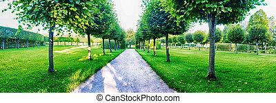 parc, panorama, catherine, ruelle