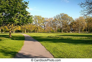 parc, perspective, ruelle
