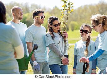 parc, râteau, groupe, arbres, volontaires