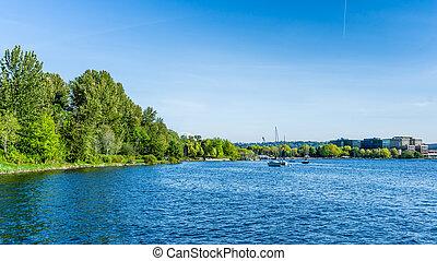 parc, rivage, lac