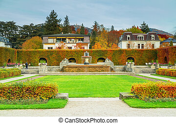 parc, rose, automne