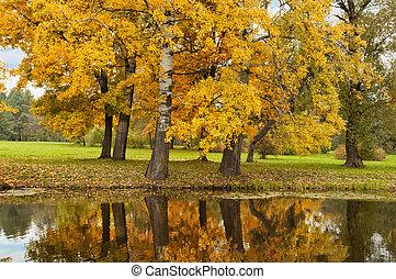parc, scène, automne