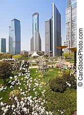 parc ville, à, bâtiment moderne, fond, dans, shanghai