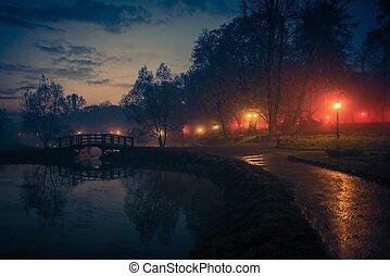 parc ville, réflexions, nuit