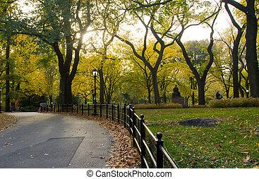 parc ville, -, york, automne, nouveau, cetral