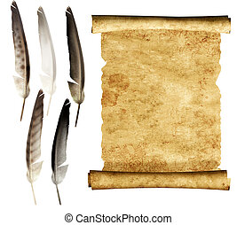 Parchment - Old parchment and collection of feathers. ...