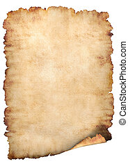Old rough antique vertical parchment paper texture background isolated on white