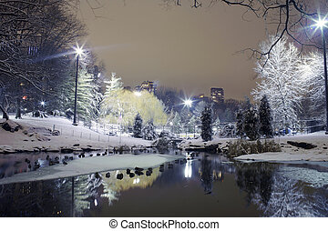 parco centrale, notte, nyc