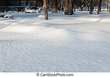 parco città, in, inverno, neve, fluttuare