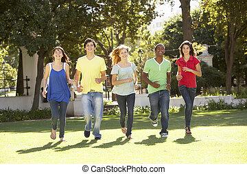 parco, correndo, gruppo, adolescenti, attraverso