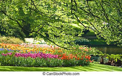 parco, in, primavera