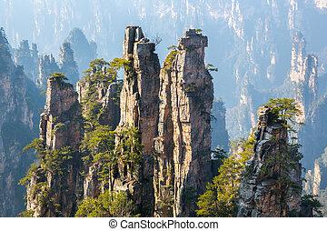 parco, nazionale, porcellana, zhangjiajie, foresta