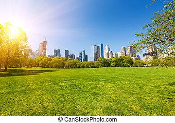 parco, soleggiato, centrale, giorno