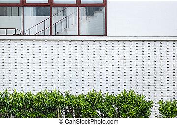 pared, casa, exterior blanco