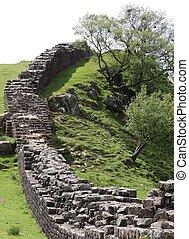 pared, drystone, árboles