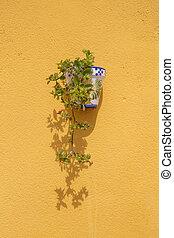 pared, flowerpot., montado
