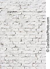 pared, ladrillos, fondo blanco, textura