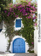 parede azul, bou, sidi, portas, branca, dito, tunísia