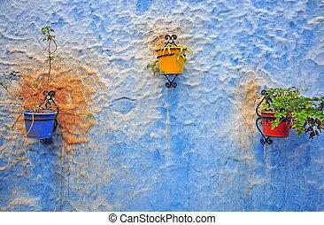 parede azul, flowerpots