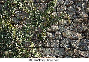 parede, brickwork, videira, verde, hera