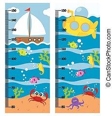 parede, metros, dois, oceânicos