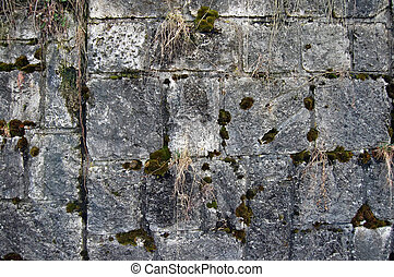 parede pedra