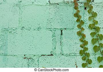 parede, tijolo, hera, videiras