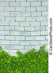 parede, verde, tijolo, folha