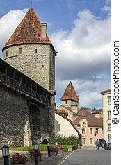 paredes cidade, -, tallinn, estónia