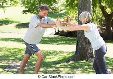pareja, cálculo, en el parque