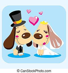 pareja, casado, perro